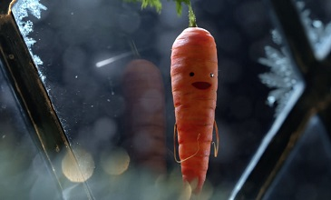 Kevin the Carrot Aldi Christmas